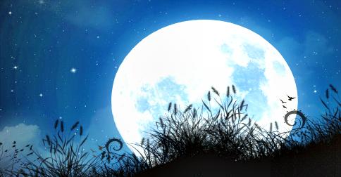 A Lua é habitada – explicação de como e por quem