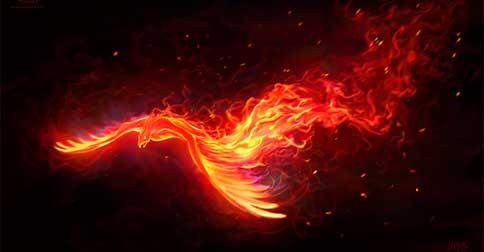 Você é a Fênix que está sendo purificada pelo fogo