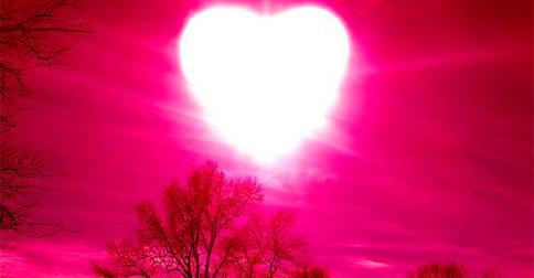 O amor é algo intrínseco em vocês