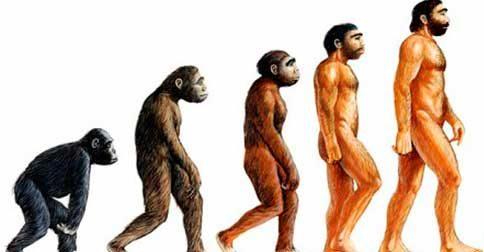 O repovoamento do planeta - Não viemos dos macacos