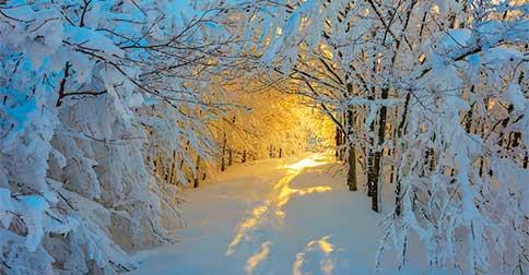 Eventos irão transpirar por caminhos mágicos para abrirem possibilidades maravilhosas