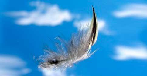 O mundo dos anjos é o seu mundo