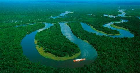 A Amazônia, está realmente grávida do meu Corpo de Luz, que logo surgirá