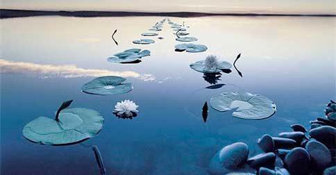 A Plenitude é a chave da conexão mais perfeita com as forças cósmicas