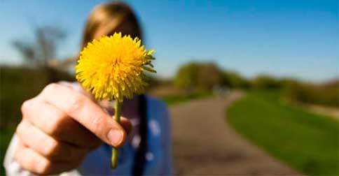 Neste mês sejam Observadores Compassivos com tudo o que se apresente