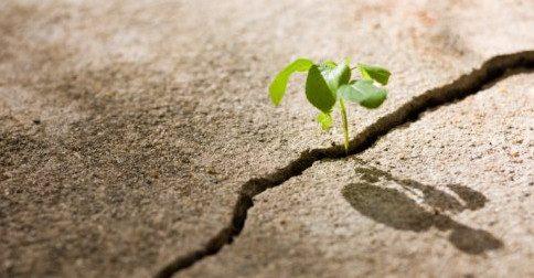 Concentrem-se na esperança!
