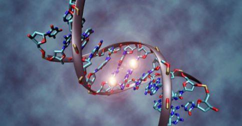 O DNA na verdade, é um portal para dimensões superiores