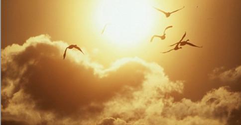 Resistir à morte é não compreender a beleza da transformação Divina