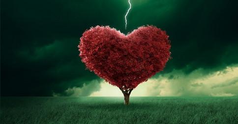 A iluminação do coração