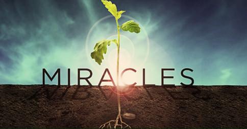 Milagres se seguirão em breve