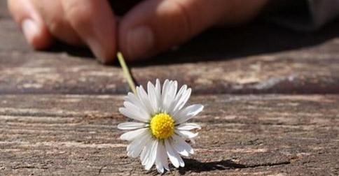 O perdão é a libertação!