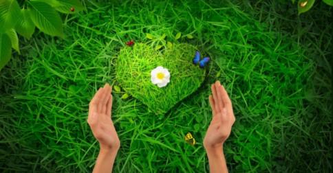 Você tem adotado a consciência de unidade dentro de si?