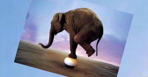 Osho - Viver em Equilíbrio