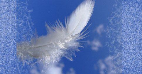 Os sinais dos Anjos