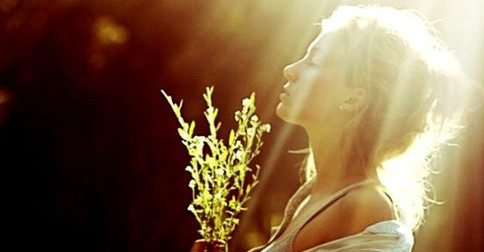 Arcanjo Miguel - a essência do Criador dentro de vocês