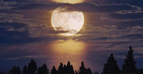 Selácia - 19 de agosto, lua cheia em aquário