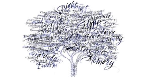 Selácia – Palavras são mais do que apenas palavras