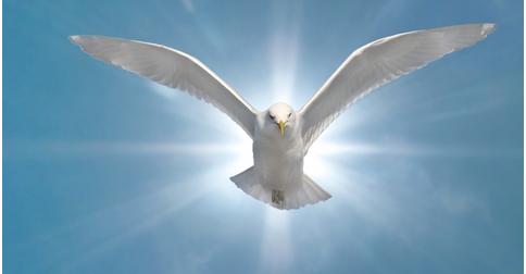 O Espírito da Verdade chegou ao planeta