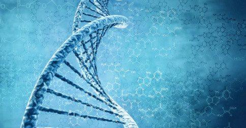 DNA - conhece-lo nos permite entender muito sobre a vida e o Universo ao nosso redor
