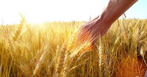 Abraham em português - A prosperidade em tua vida lhe trará somente bem-estar e felicidade