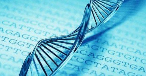 DNA - A reestruturação do seu DNA está acontecendo agora muito intensamente