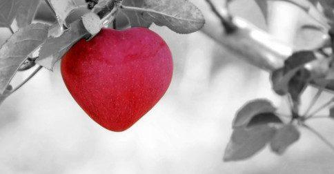 Quando você se abre ao Amor