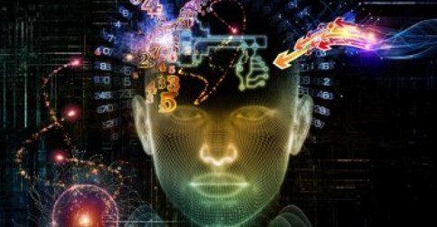 Os quatro níveis de consciência
