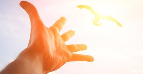 Pleiadianos – O seu Coração canta em Aliança com a Luz