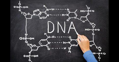 Continuamos a receber frequências que atualizam nosso DNA