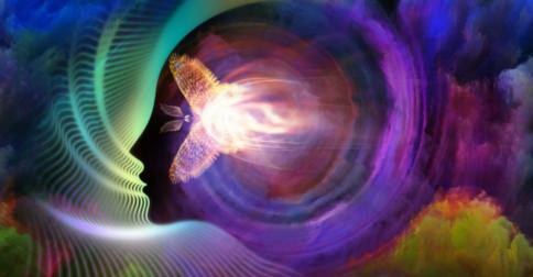 Estamos numa fase de recalibração física e de consciência