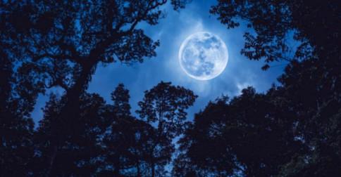 29 de maio há outra Lua Cheia trazendo outra Oportunidade para ser mais Amor