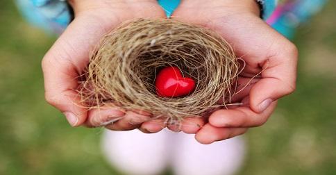 Os Pleiadianos - A compreensão necessita fazer ninho nos corações de vocês
