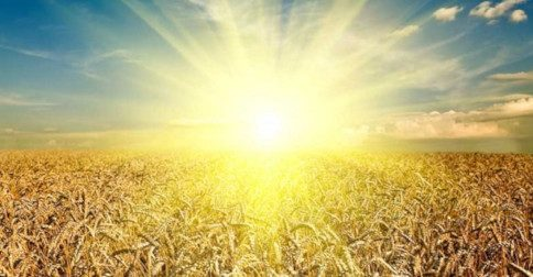 Espirais Cósmicas de Luz Reforçando o Grande Despertar