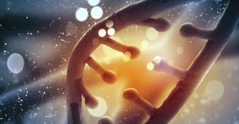 Ativando sementes lemurianas em nosso DNA