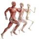O corpo que vocês estão usando neste momento não são vocês
