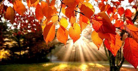 As energias transformadoras de Outubro