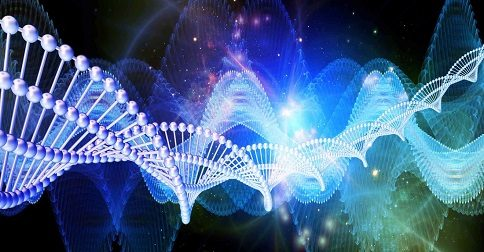 Como seu DNA se liga às grades da Terra