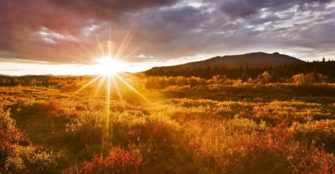 A Glória preside em seu pleno despertar