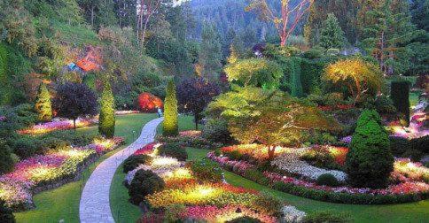 O planeta Terra é um lindo jardim