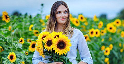 As Fadas de Flores da Nova Gaia