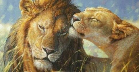 Os Ensinamentos do Sagrado Coração de Leão